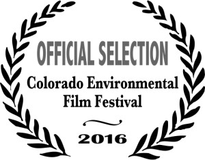 Colorado film fest logo