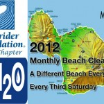 Monthly Beach Clean-ups